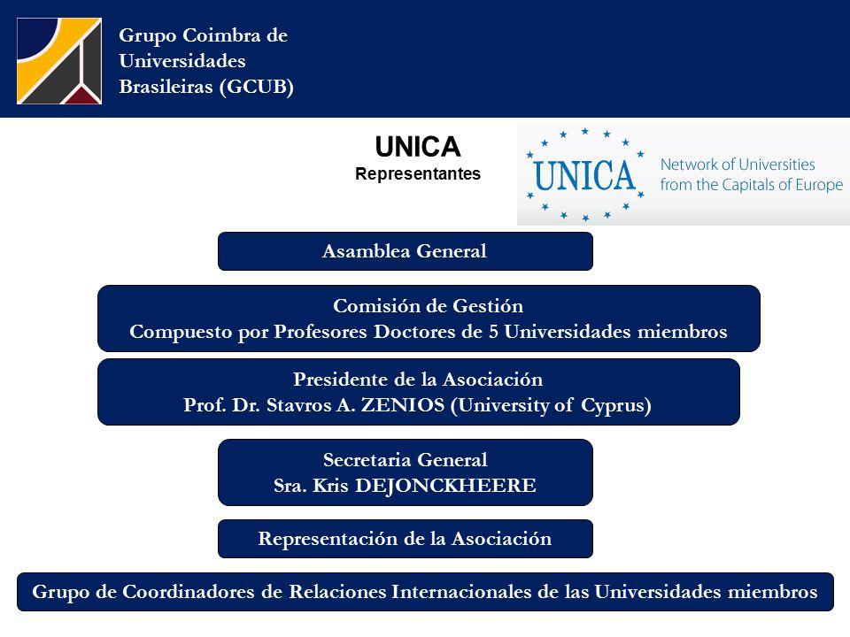 UNICA Representantes Grupo Coimbra de Universidades Brasileiras (GCUB) Comisión de Gestión Compuesto por Profesores Doctores de 5 Universidades miembros Presidente de la Asociación Prof.
