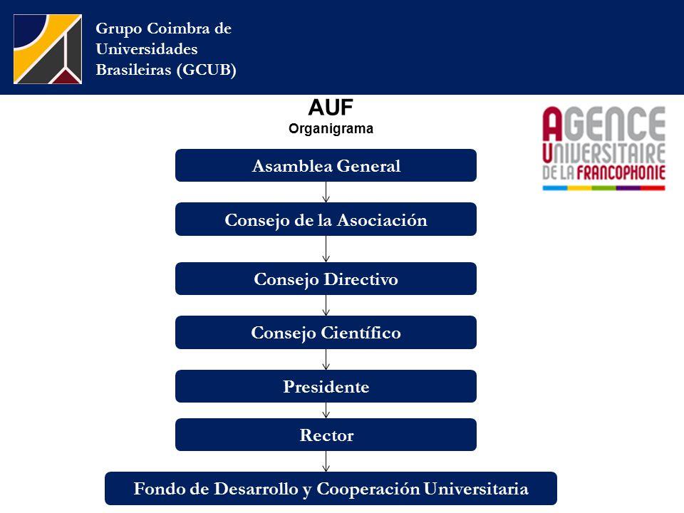AUF Organigrama Grupo Coimbra de Universidades Brasileiras (GCUB) Consejo de la Asociación Consejo Directivo Asamblea General Consejo Científico Presidente Rector Fondo de Desarrollo y Cooperación Universitaria