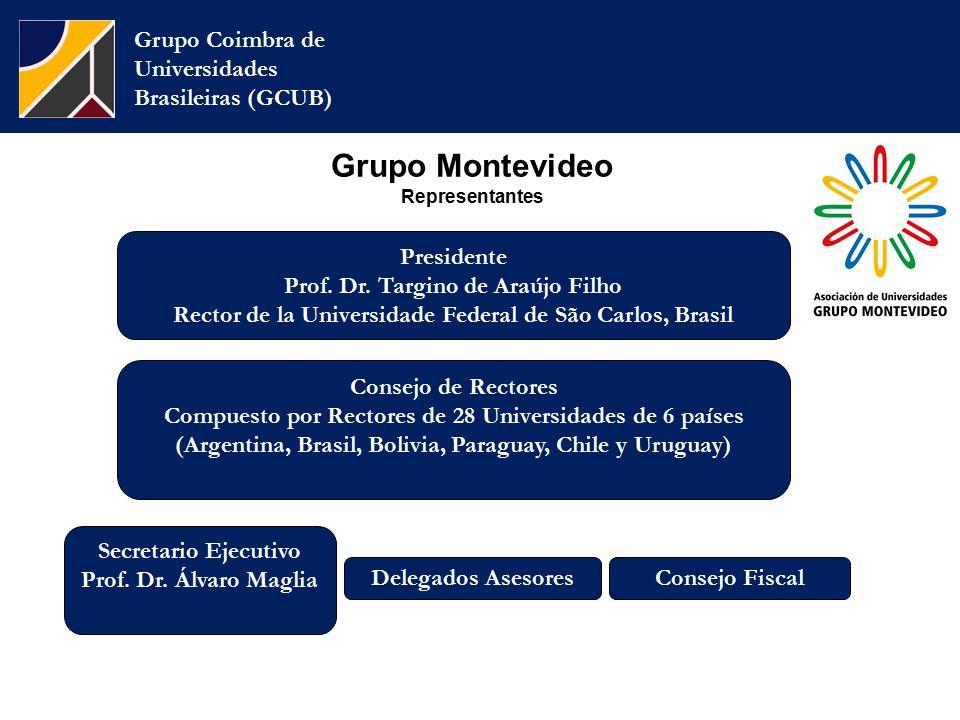 Grupo Montevideo Representantes Grupo Coimbra de Universidades Brasileiras (GCUB) Consejo de Rectores Compuesto por Rectores de 28 Universidades de 6 países (Argentina, Brasil, Bolivia, Paraguay, Chile y Uruguay) Secretario Ejecutivo Prof.
