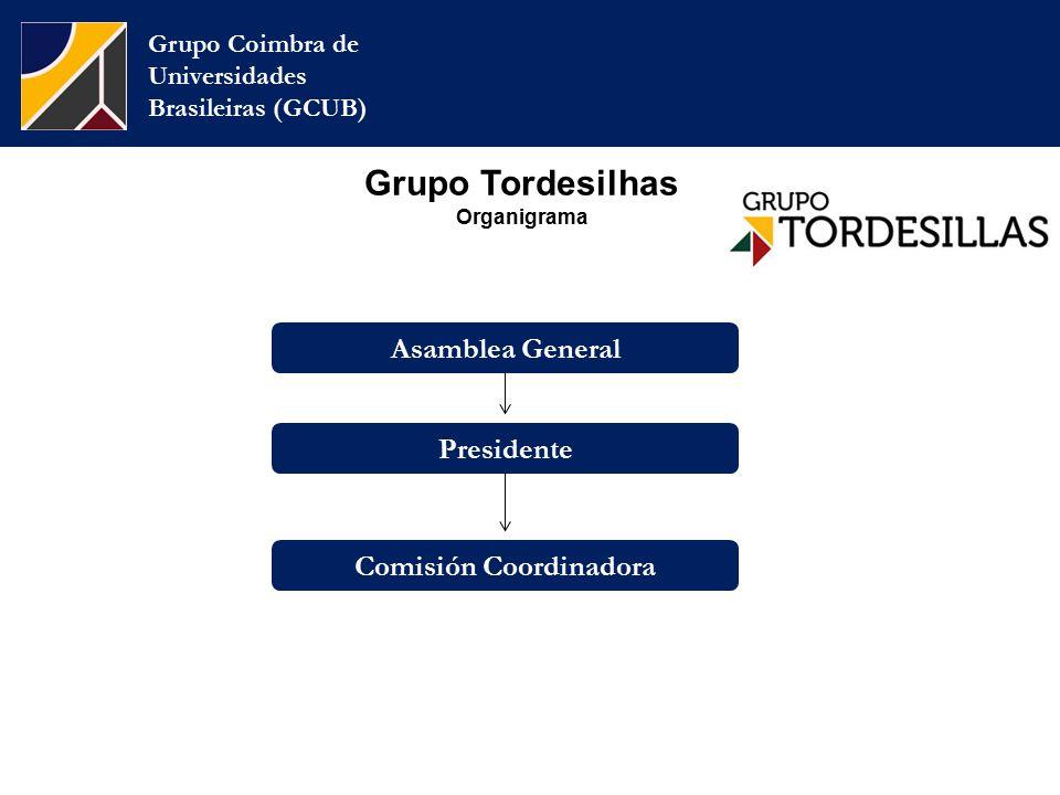 Grupo Tordesilhas Organigrama Grupo Coimbra de Universidades Brasileiras (GCUB) Presidente Comisión Coordinadora Asamblea General