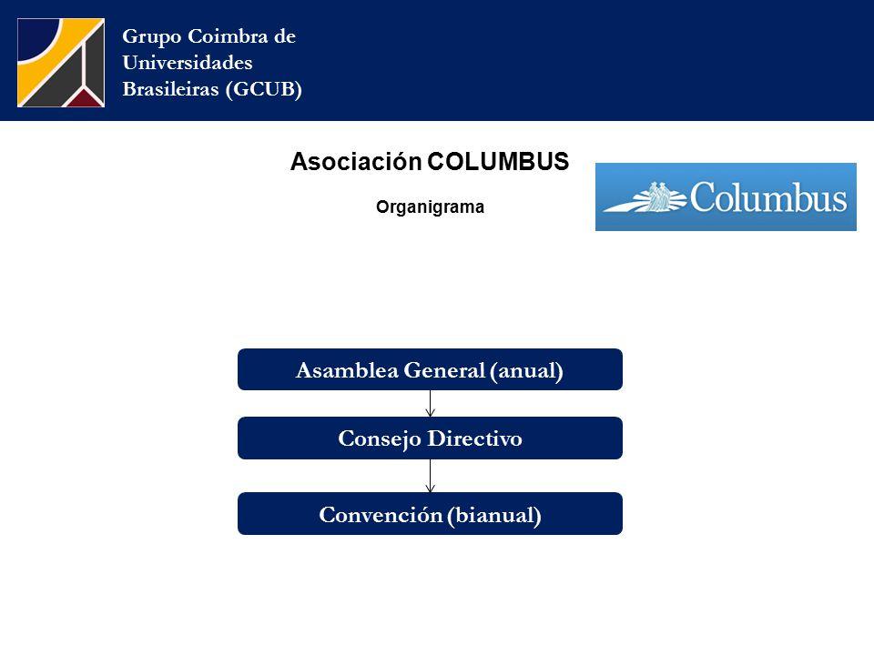 Asociación COLUMBUS Organigrama Grupo Coimbra de Universidades Brasileiras (GCUB) Consejo Directivo Convención (bianual) Asamblea General (anual)
