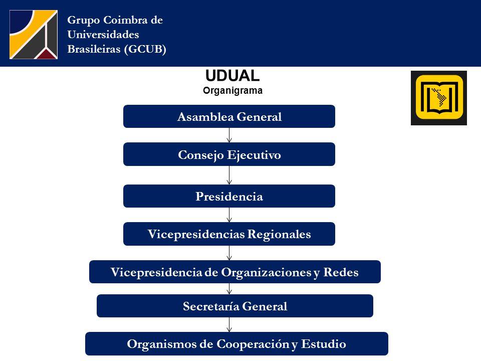 UDUAL Organigrama Grupo Coimbra de Universidades Brasileiras (GCUB) Consejo Ejecutivo Presidencia Asamblea General Vicepresidencias Regionales Vicepresidencia de Organizaciones y Redes Secretaría General Organismos de Cooperación y Estudio