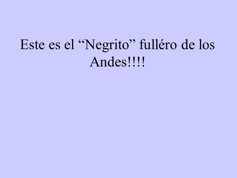 Este es el Negrito fulléro de los Andes!!!!
