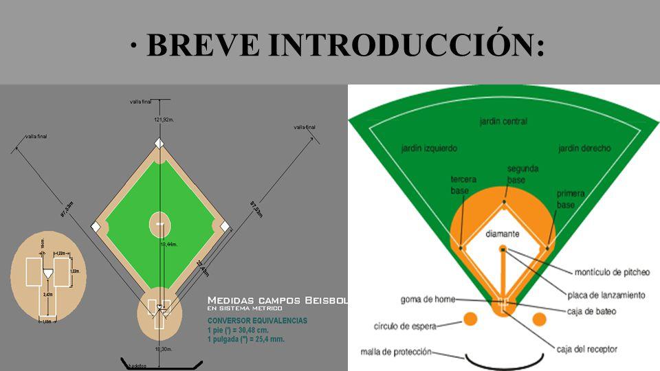RECEPCIÓN DE LA BOLA Podemos encontrar cuatro tipos de recepción de la bola: A MEDIA ALTURA (por encima de la cadera): o Los dedos deben apuntar hacia arriba, al igual que si la bola viene por debajo de la cadera, apuntan hacia abajo.