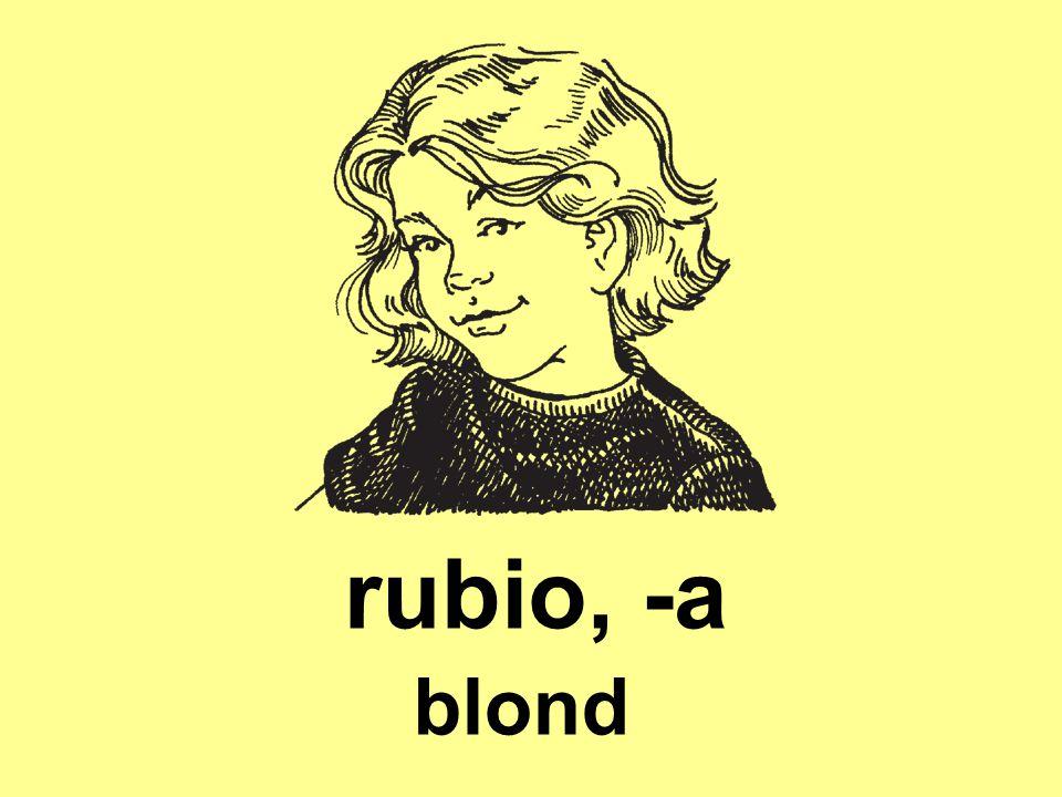 rubio, -a blond