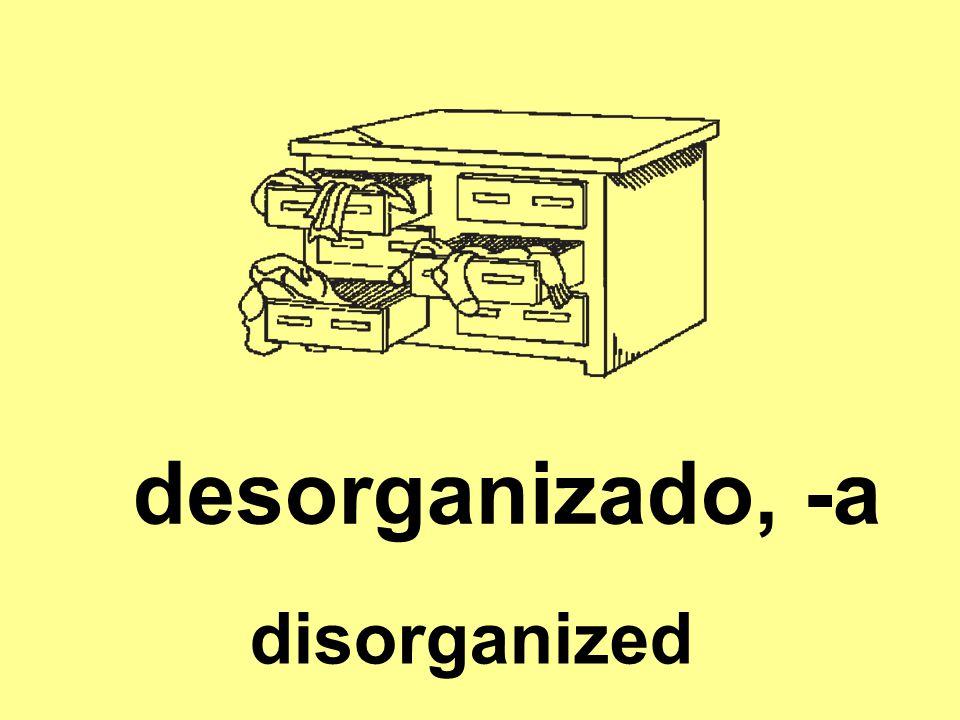 desorganizado, -a disorganized