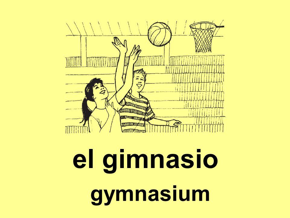 el gimnasio gymnasium