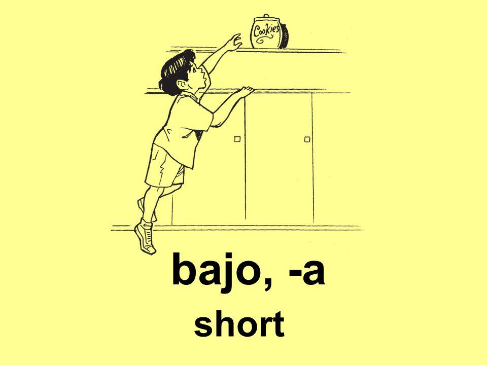 bajo, -a short