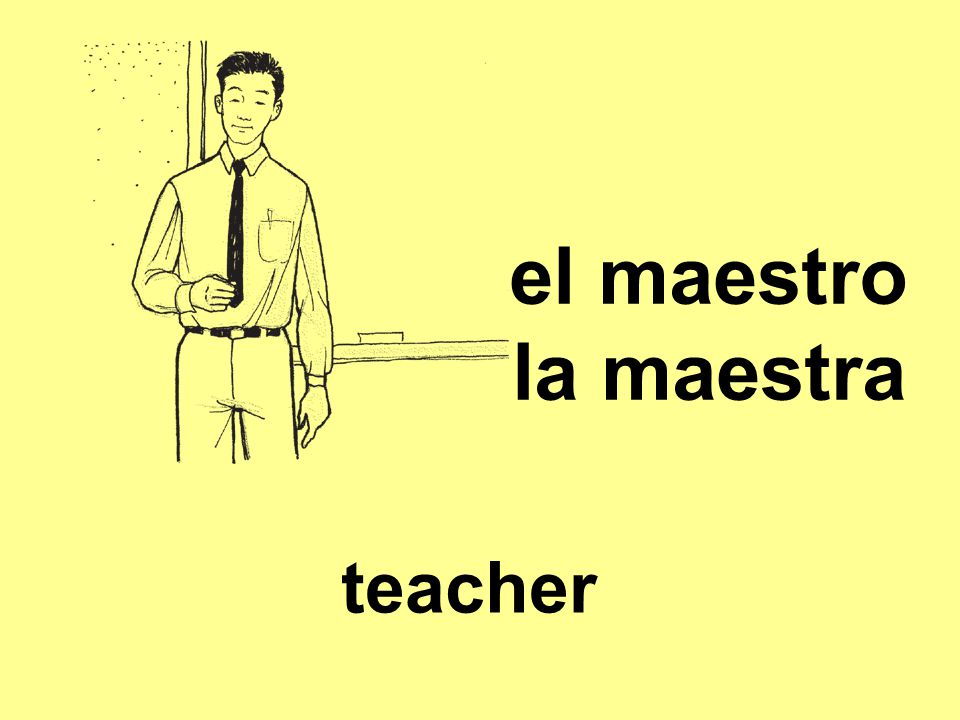 el maestro la maestra teacher