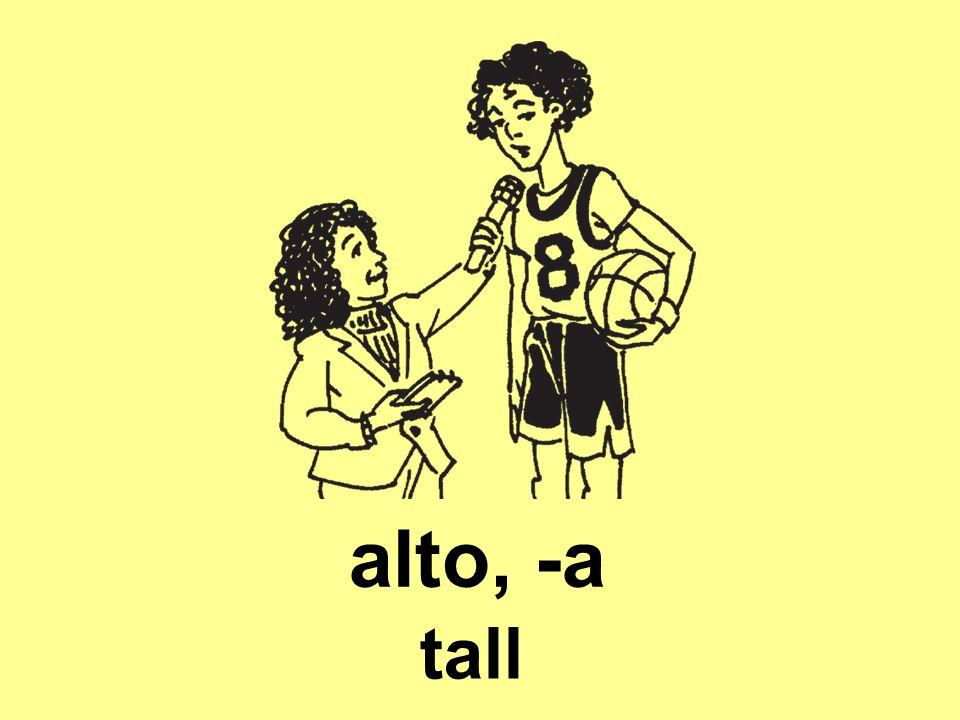alto, -a tall