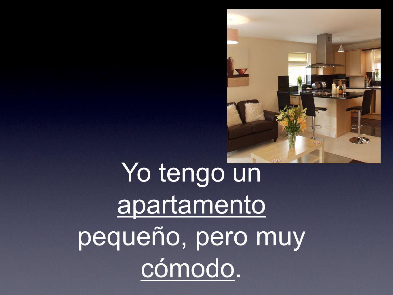 Yo tengo un apartamento pequeño, pero muy cómodo.