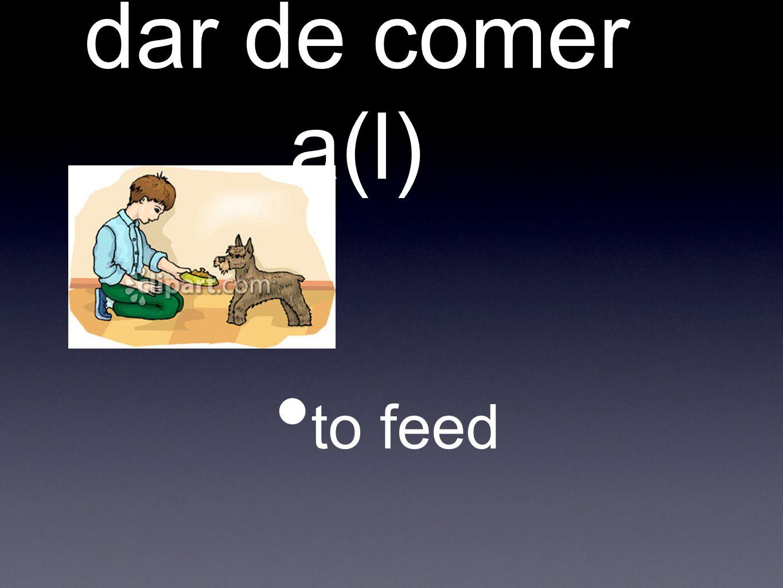 dar de comer a(l) to feed