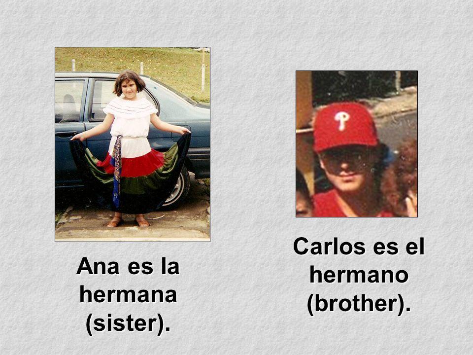 Ana es la hermana (sister). Carlos es el hermano (brother).
