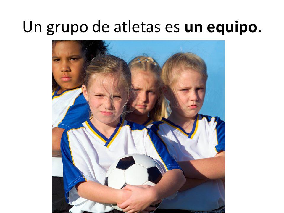 Un grupo de atletas es un equipo.
