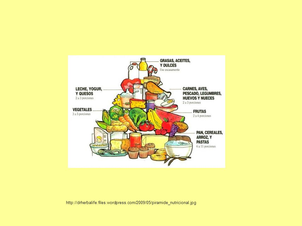 http://drherbalife.files.wordpress.com/2009/05/piramide_nutricional.jpg