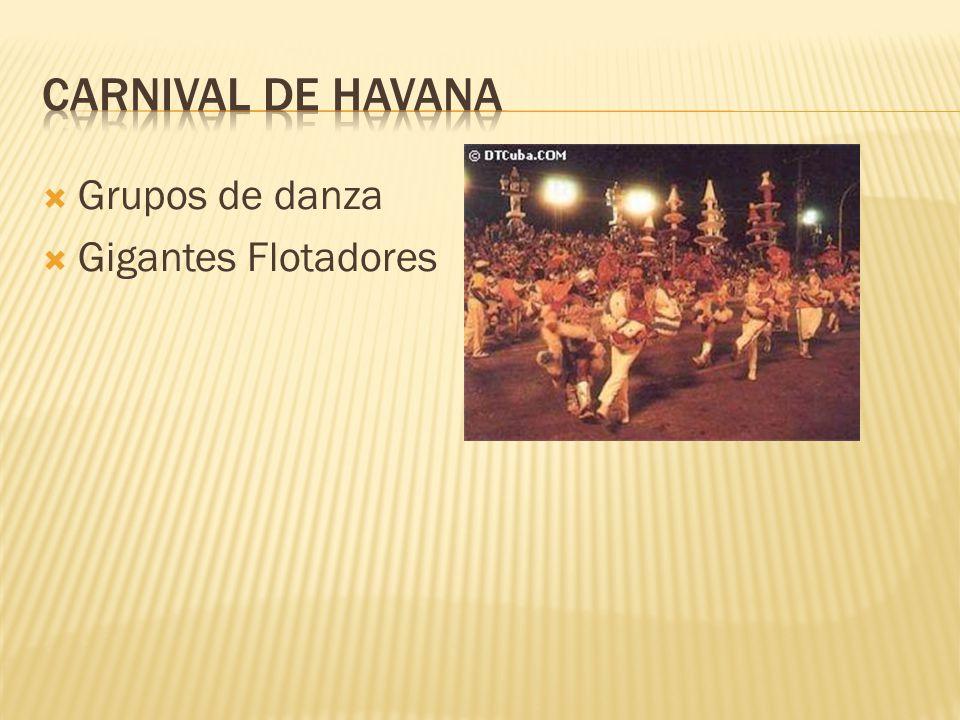  Grupos de danza  Gigantes Flotadores