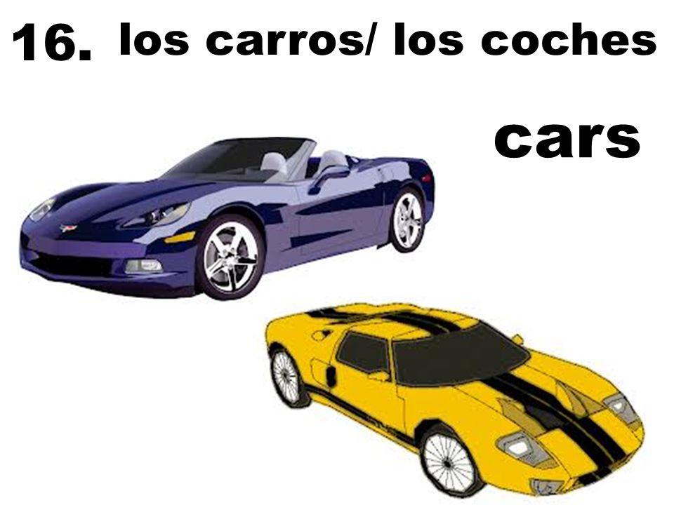 los carros/ los coches 16. cars