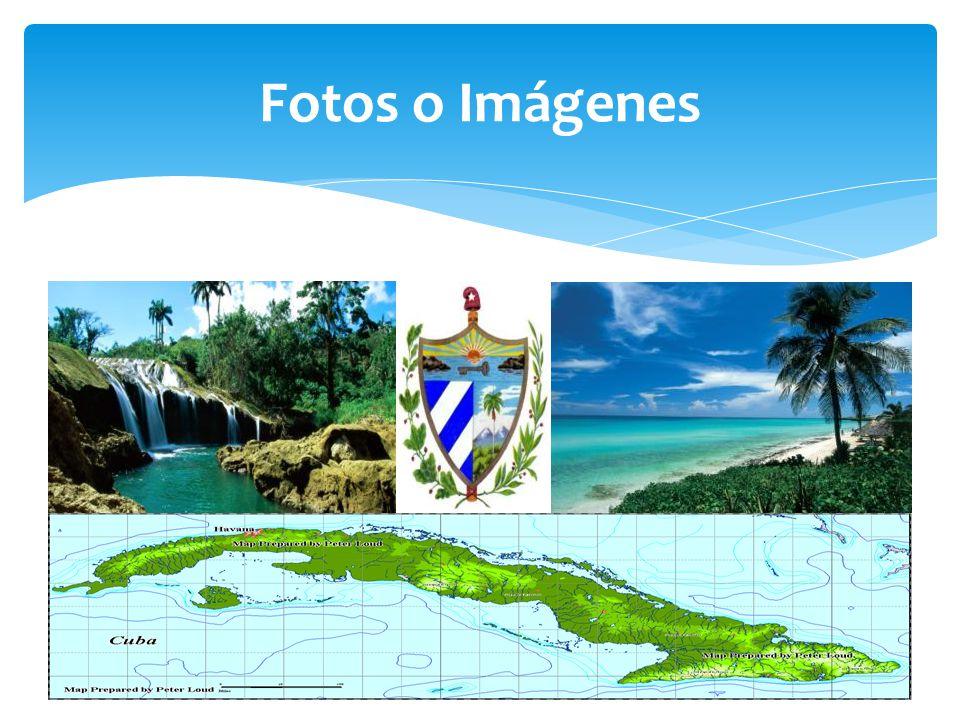 Fotos o Imágenes