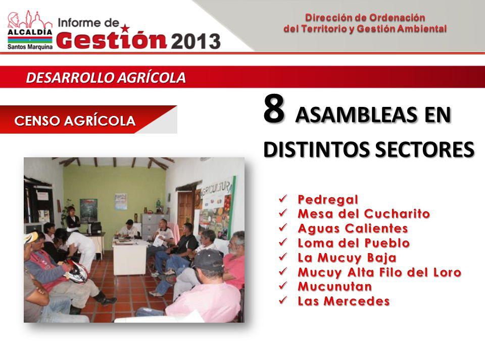 DESARROLLO AGRÍCOLA CENSO AGRÍCOLA 8 ASAMBLEAS EN DISTINTOS SECTORES