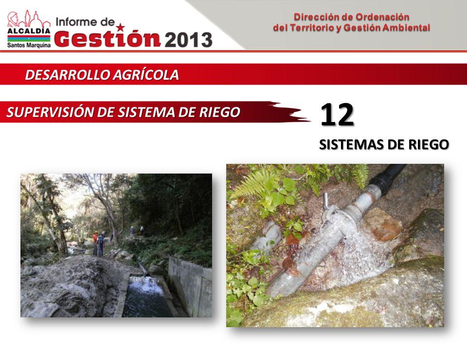 DESARROLLO AGRÍCOLA SUPERVISIÓN DE SISTEMA DE RIEGO 12 SISTEMAS DE RIEGO