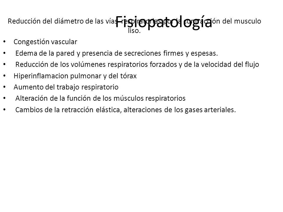 Fisiopatología Reducción del diámetro de las vías respiratorias por la contracción del musculo liso.