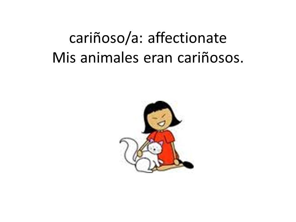 cariñoso/a: affectionate Mis animales eran cariñosos.