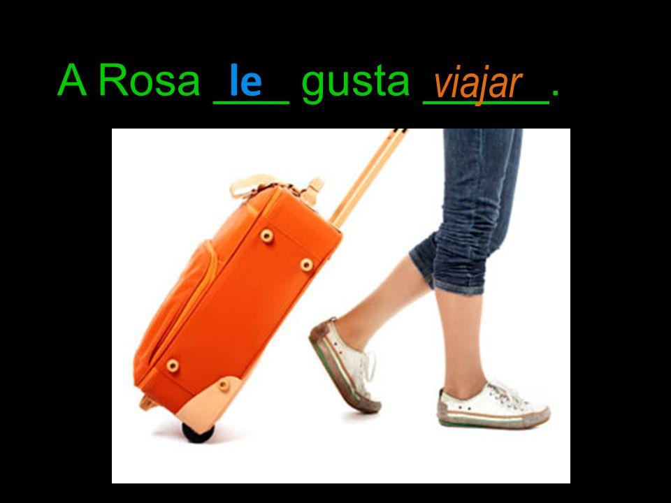 A Rosa ___ gusta _____. le viajar