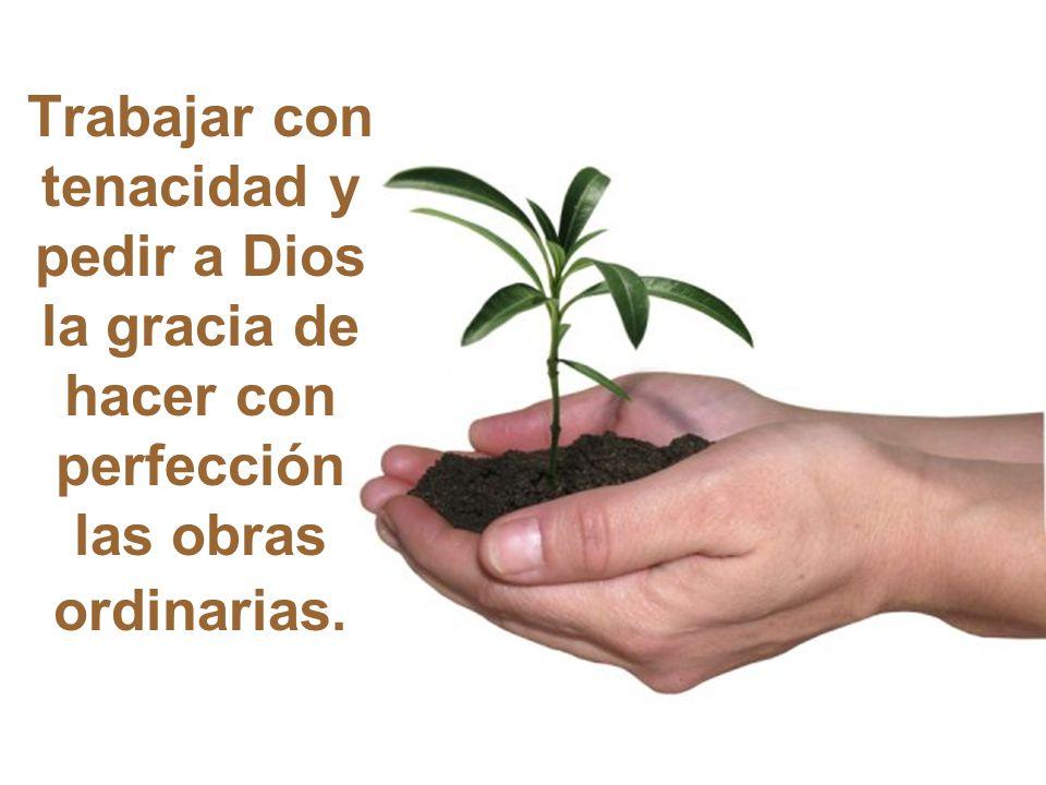 Para redimir el mundo el Verbo Eterno se hace sacerdote y víctima: se anonada, humilla, obedece, se rinde a la voluntad del Padre.