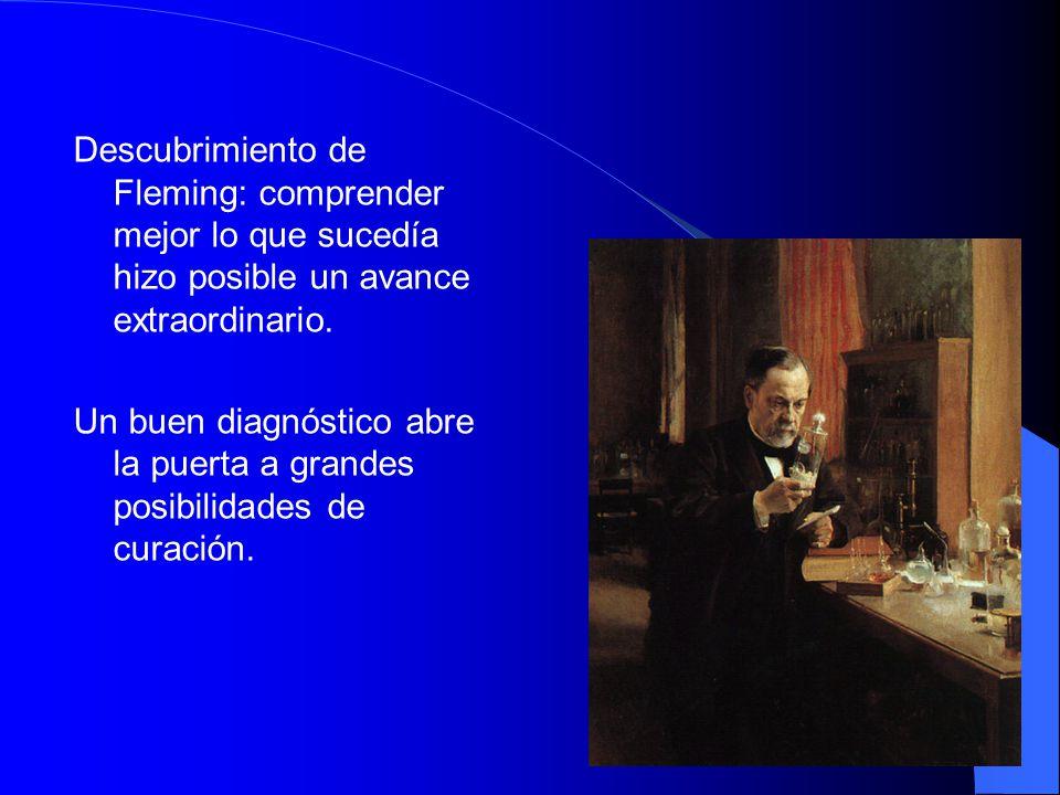 25 Descubrimiento de Fleming: comprender mejor lo que sucedía hizo posible un avance extraordinario.