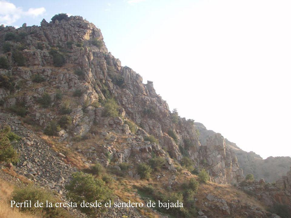 Perfil de la cresta desde el sendero de bajada
