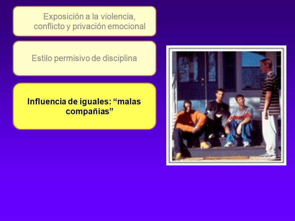 Estilo permisivo de disciplina Exposición a la violencia, conflicto y privación emocional Influencia de iguales: malas compañias