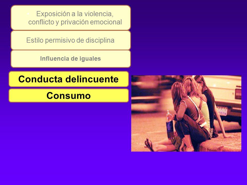 Conducta delincuente Consumo Estilo permisivo de disciplina Exposición a la violencia, conflicto y privación emocional Influencia de iguales