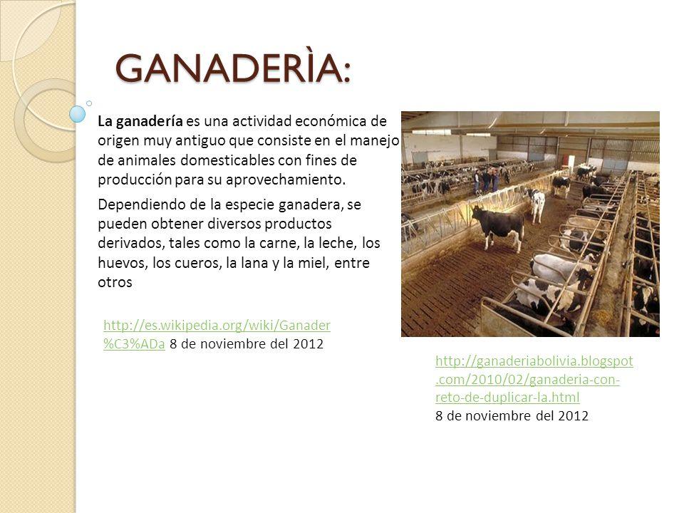 GANADERÌA: La ganadería es una actividad económica de origen muy antiguo que consiste en el manejo de animales domesticables con fines de producción para su aprovechamiento.