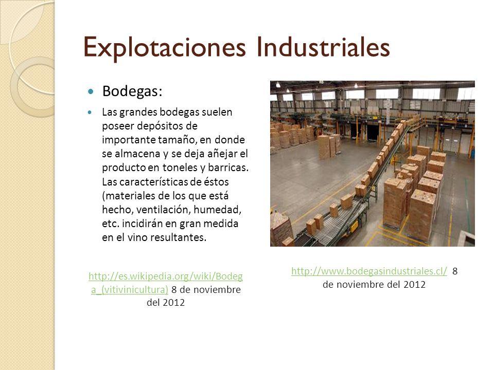 Explotaciones Industriales Bodegas: Las grandes bodegas suelen poseer depósitos de importante tamaño, en donde se almacena y se deja añejar el producto en toneles y barricas.