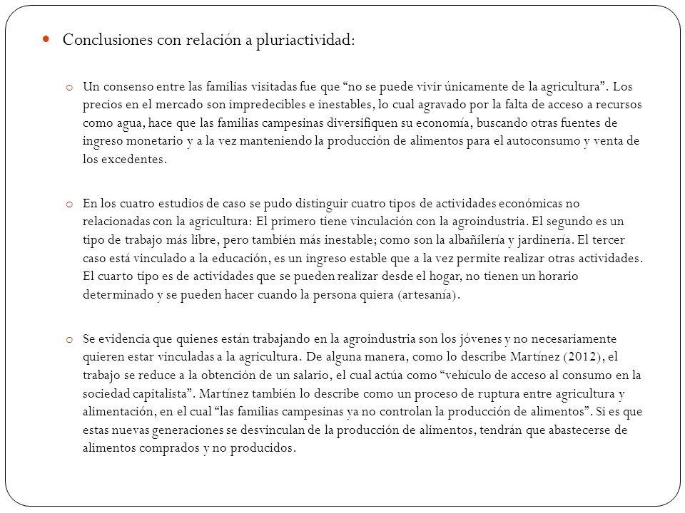 Conclusiones con relación a pluriactividad: o Un consenso entre las familias visitadas fue que no se puede vivir únicamente de la agricultura .