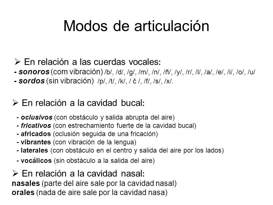 Modos de articulación  En relación a las cuerdas vocales : - sonoros (com vibración) /b/, /d/, /g/, /m/, /n/, /ñ/, /y/, /r/, /l/, /a/, /e/, /i/, /o/, /u/ - sordos (sin vibración) /p/, /t/, /k/, / č /, /f/, /s/, /x/.