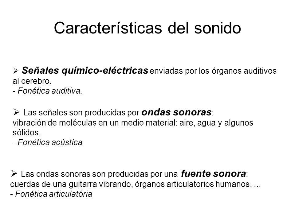 Características del sonido  Señales químico-eléctricas enviadas por los órganos auditivos al cerebro.
