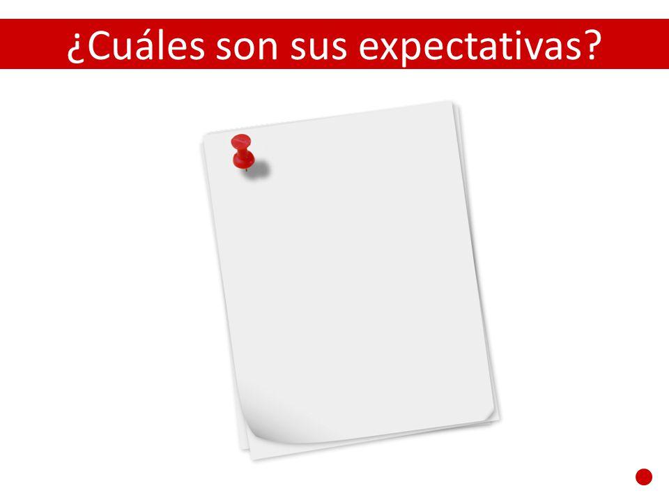 ¿Cuáles son sus expectativas