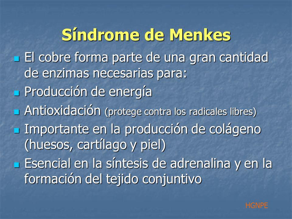 Síndrome de Menkes El cobre forma parte de una gran cantidad de enzimas necesarias para: El cobre forma parte de una gran cantidad de enzimas necesarias para: Producción de energía Producción de energía Antioxidación (protege contra los radicales libres) Antioxidación (protege contra los radicales libres) Importante en la producción de colágeno (huesos, cartílago y piel) Importante en la producción de colágeno (huesos, cartílago y piel) Esencial en la síntesis de adrenalina y en la formación del tejido conjuntivo Esencial en la síntesis de adrenalina y en la formación del tejido conjuntivo HGNPE
