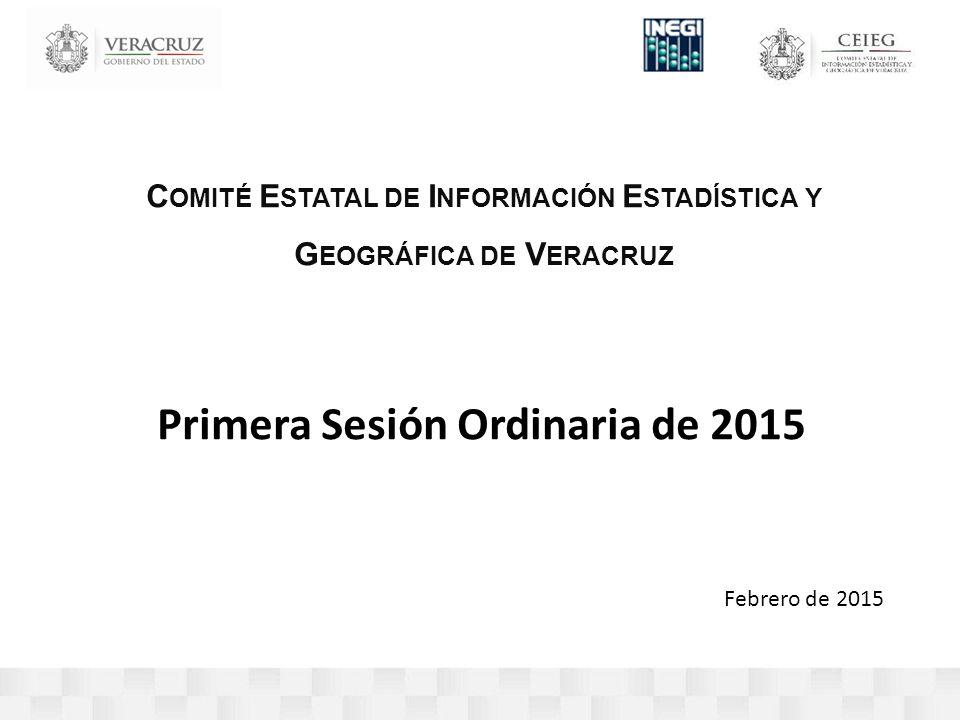 C OMITÉ E STATAL DE I NFORMACIÓN E STADÍSTICA Y G EOGRÁFICA DE V ERACRUZ Primera Sesión Ordinaria de 2015 Febrero de 2015