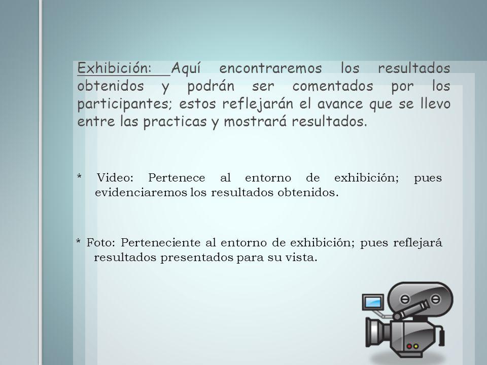 Producción: Se manifiestan para la realización de ejercicios y resolución de problemas.