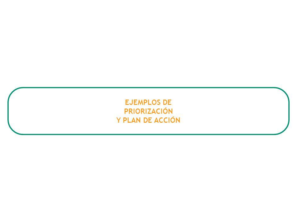 EJEMPLOS DE PRIORIZACIÓN Y PLAN DE ACCIÓN