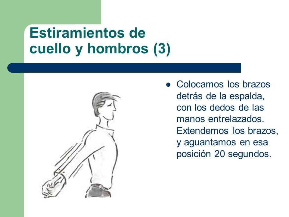 Estiramientos de cuello y hombros (3) Colocamos los brazos detrás de la espalda, con los dedos de las manos entrelazados.
