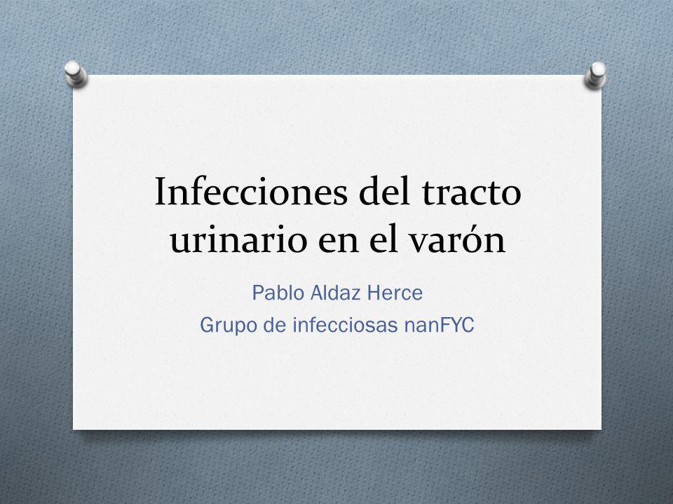 Infecciones del tracto urinario en el varón Pablo Aldaz Herce Grupo de infecciosas nanFYC