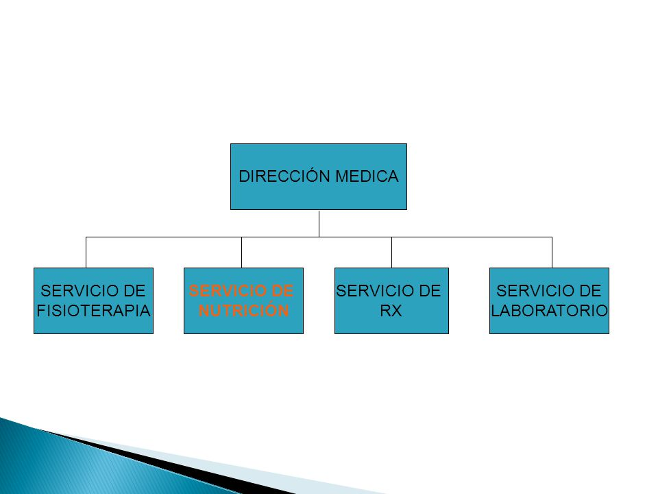 DIRECCIÓN MEDICA SERVICIO DE FISIOTERAPIA SERVICIO DE NUTRICIÓN SERVICIO DE RX SERVICIO DE LABORATORIO