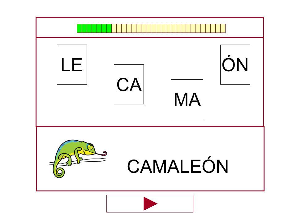 ÓN CA LE MA …CAMALE…