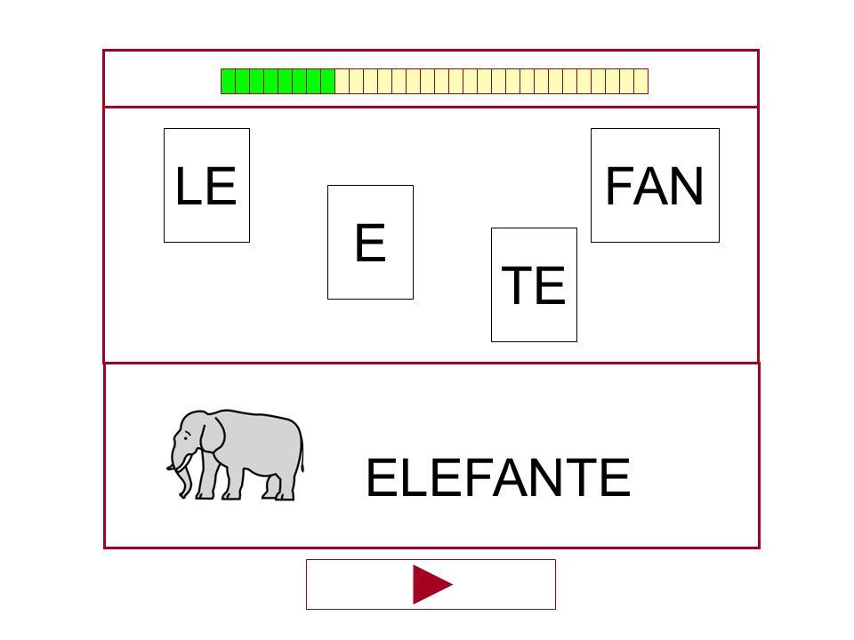 FAN E LE TE …ELEFAN…