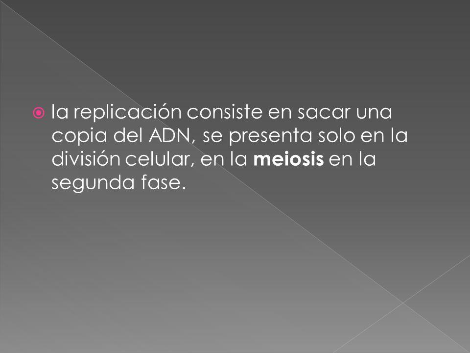  la replicación consiste en sacar una copia del ADN, se presenta solo en la división celular, en la meiosis en la segunda fase.