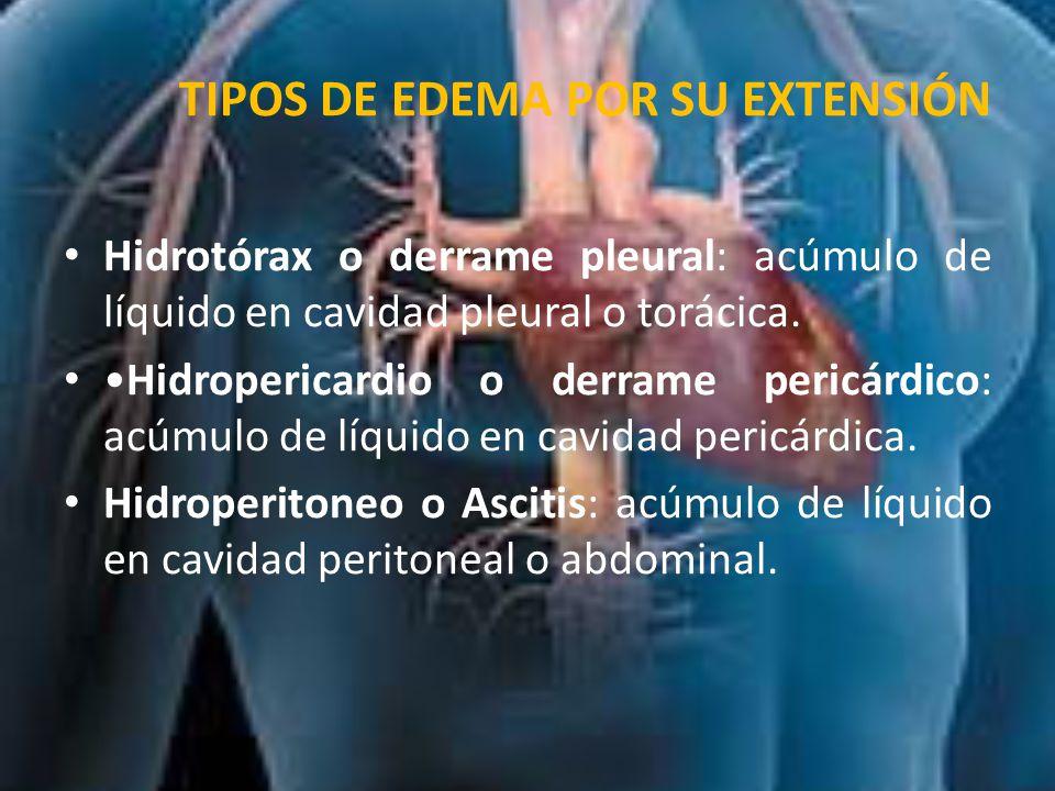 ETIOPATOGENIA El volumen del líquido depende de:  La presión hidrostática de la sangre en la microcirculacion.
