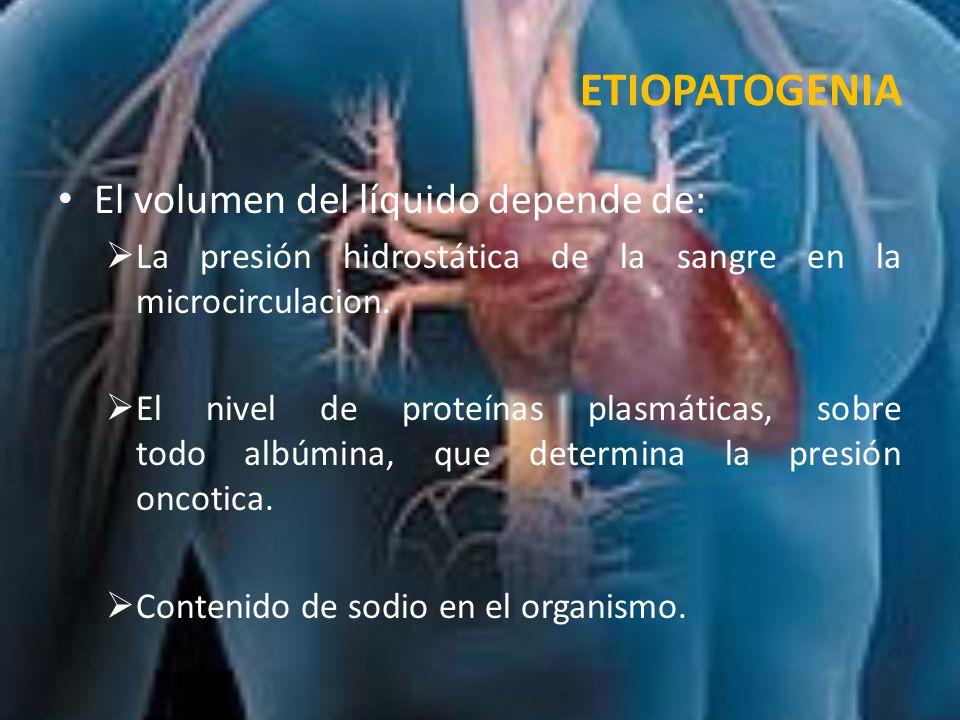 HEMOSTASIA Proceso del tapón hemostático: 1.Adhesión de plaquetas en zona de lesión de pared vascular.